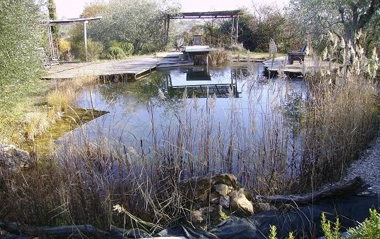 piscine pubbliche senza cloro terra nuova