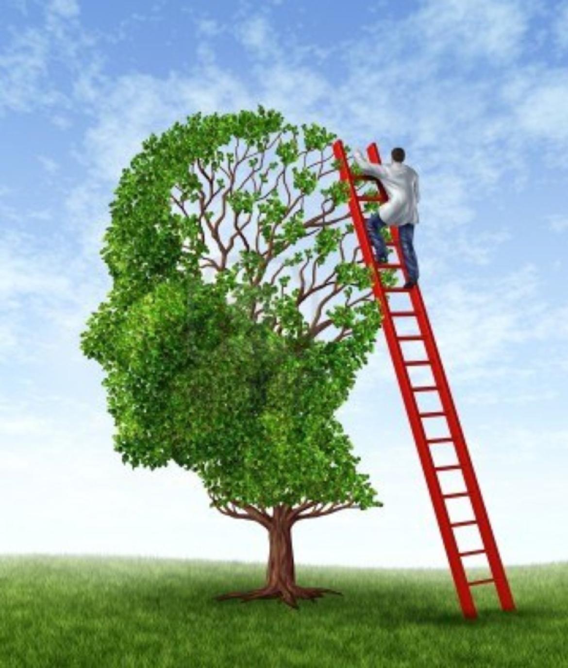 Archetipi psichici, affinità elettive, empatia e superamento del senso di giudizio