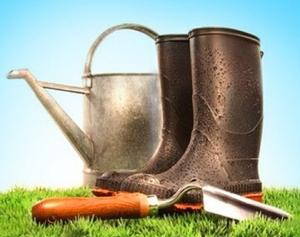 Il giardiniere ecologico terra nuova for Giardiniere bologna
