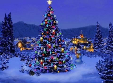 Del Natale.La Storia Dell Abete Uno Dei Simboli Del Natale Terra Nuova
