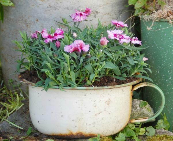 Allegre fioriere con pentole di metallo terra nuova for Fioriere fai da te