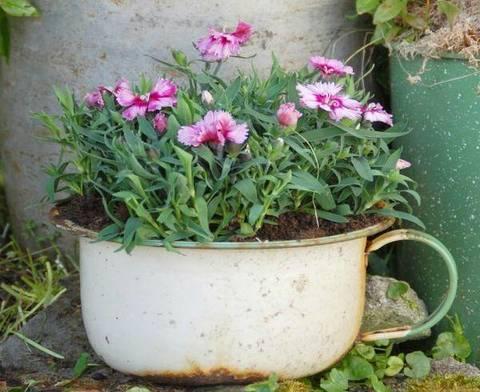 Fioriere Fai Da Te ~ Allegre fioriere con pentole di metallo terra nuova