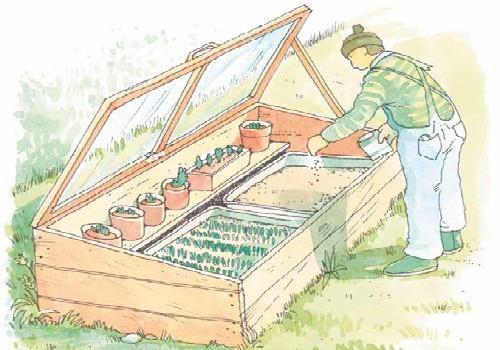 Costruire un semenzaio terra nuova for Costruire un pergolato in legno fai da te