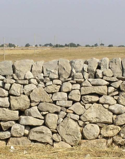 Costruzione Muro A Secco.Muri A Secco Terra Nuova