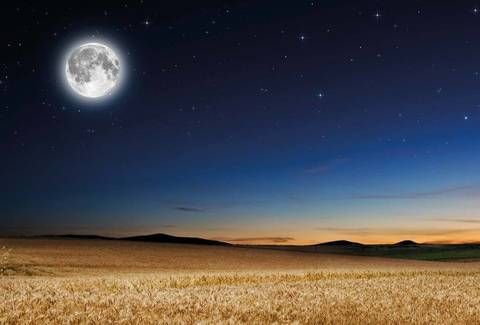 Calendario Lunare Capelli Giugno 2020.Conoscere Le Fasi Lunari Terra Nuova
