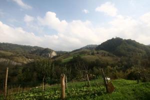 Campagna a Montecorone