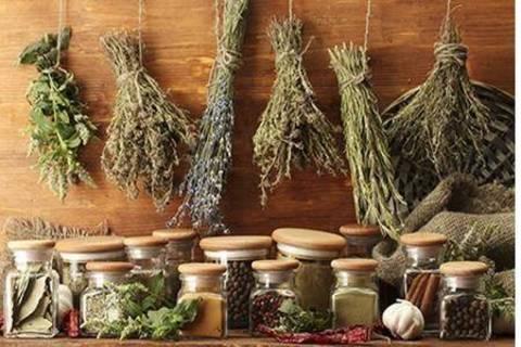 Come essiccare gli aromi da cucina terra nuova - Aromi da cucina ...