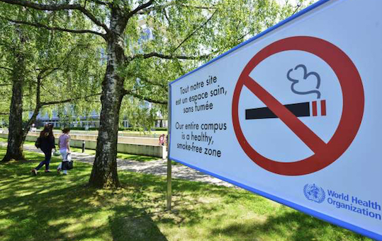 Vietato fumare nei giardini pubblici terra nuova for Laghetti nei giardini