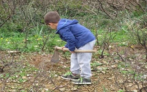 Piantiamo un milione di semi terra nuova for Cosa seminare a febbraio