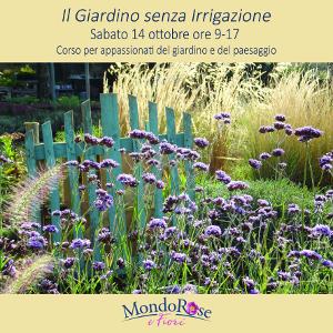 Il giardino senza irrigazione terra nuova - Oltre il giardino torrent ita ...