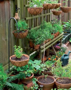 Quali vasi scegliere per fare l\'orto sul balcone - Terra Nuova