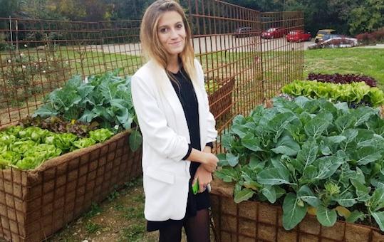 L 39 orto bioattivo oltre il biologico terra nuova - L orto in giardino ...